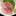Medai ~ Sashimi Specials ~ Japanese butterfish
