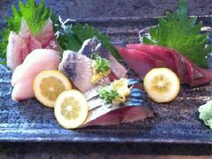 Stewart's beautiful sashimi plate with Kamasu, Medai, Goma Saba, Toro Iwashi, Warasa